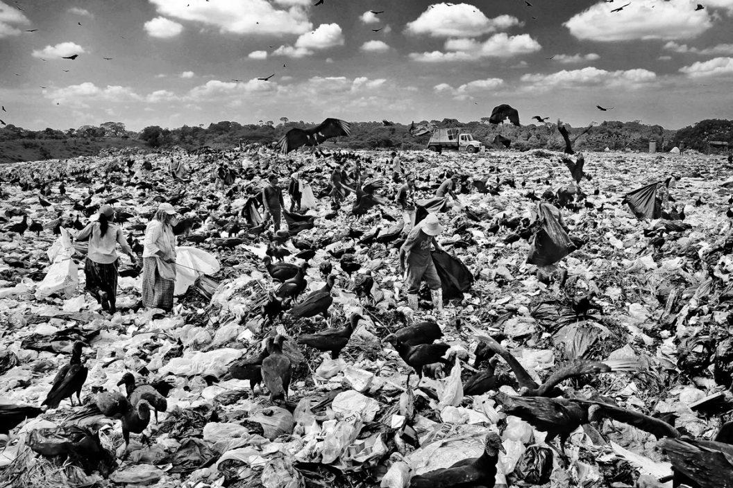 Migrantes de la basura (serie x 5)