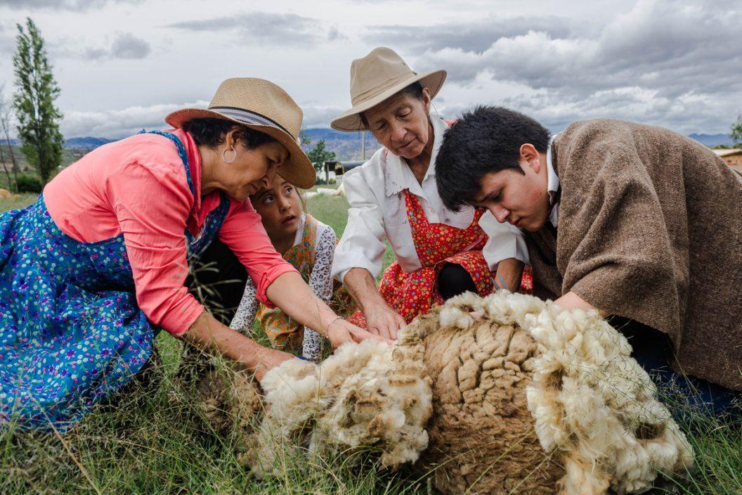 La ruta de la lana - Maria López - Colombia