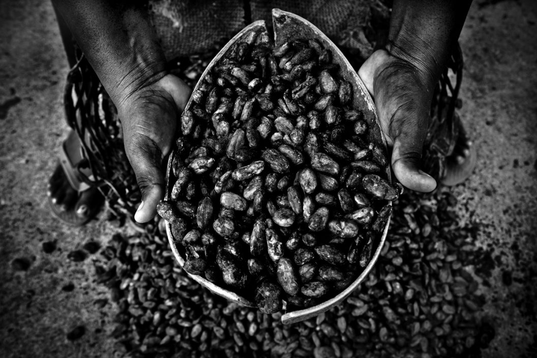 Mujeres que secan cacao al sol(serie x 3)