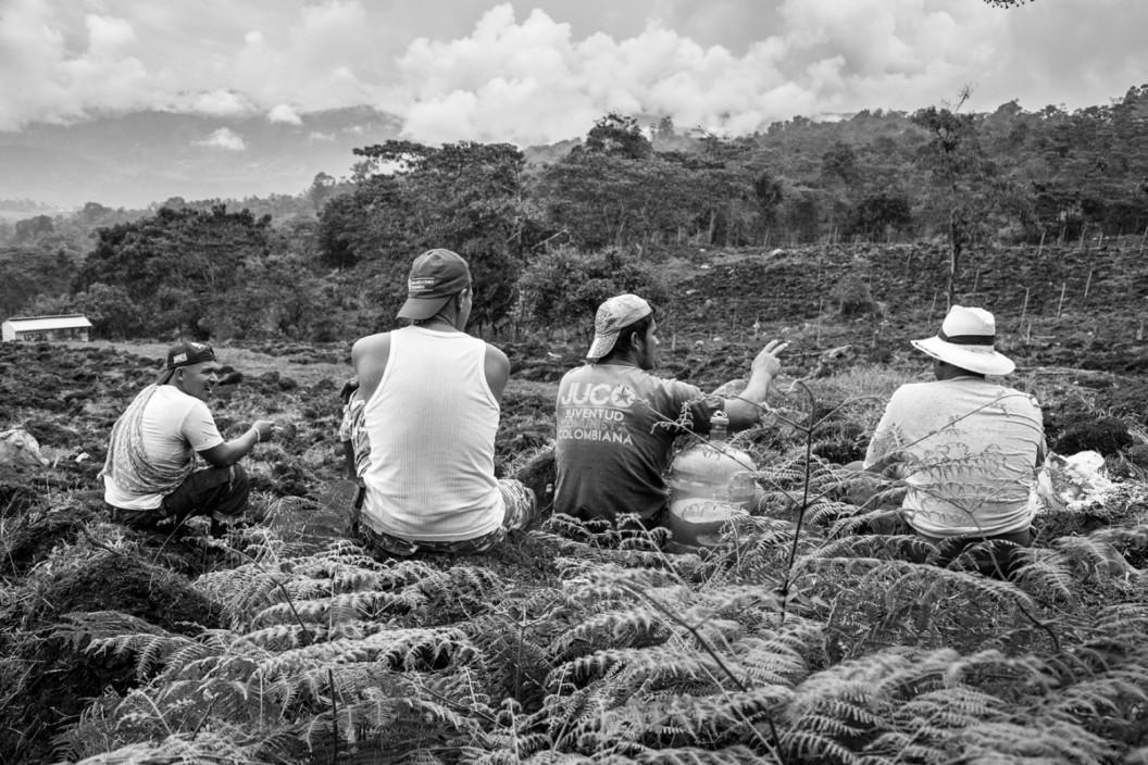 Los hombres que cambiaron las armas por el azadón 1- Andrea Moreno Chacon © COLOMBIA