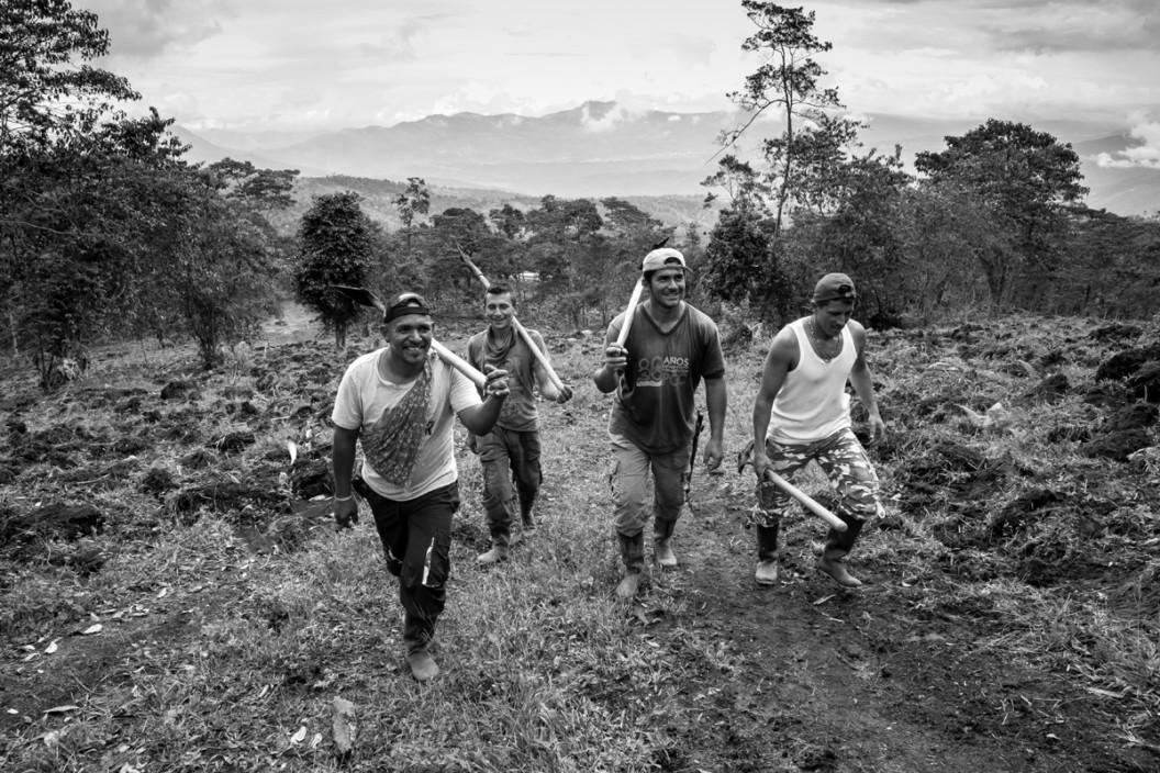 Los hombres que cambiaron las armas por el azadón 2 - Andrea Moreno Chacon © COLOMBIA